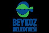 Beykoz belediyesi fen işleri – ihale ilani- alüminyum korkuluk – istanbul
